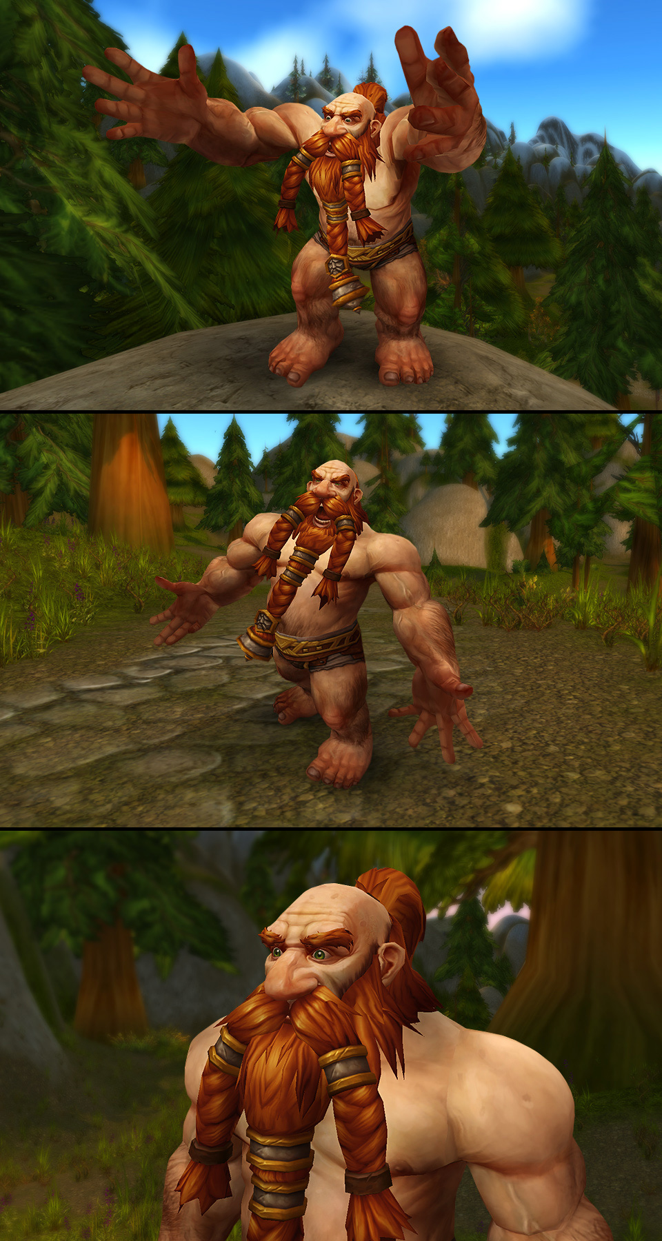 Warcraft orc raider hardcore picture