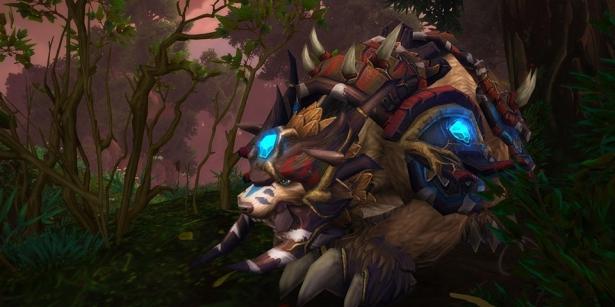 Рунические силы друидов для легендарных предметов в Shadowlands